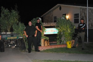 Large pot plants are found at Rock Bluff residence